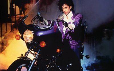 So. Prince, and…